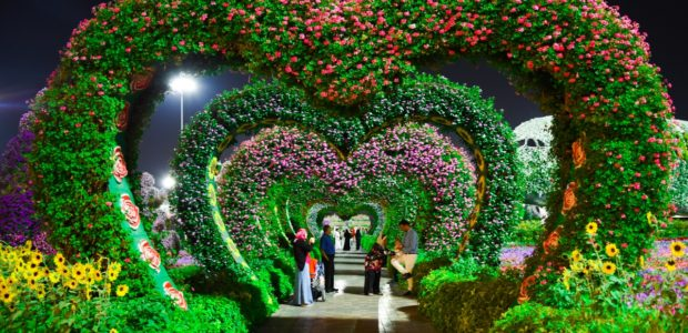 heart shaped pink and purple flower garden 1040626