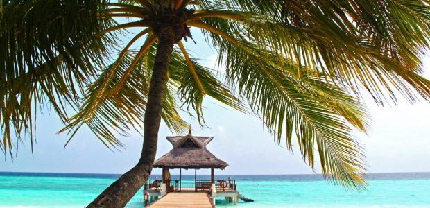 beach beautiful blue clear water 279574
