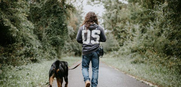 man holdingwalking dog 2899097