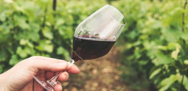 biologische wijn